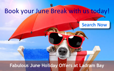 Search June Holidays
